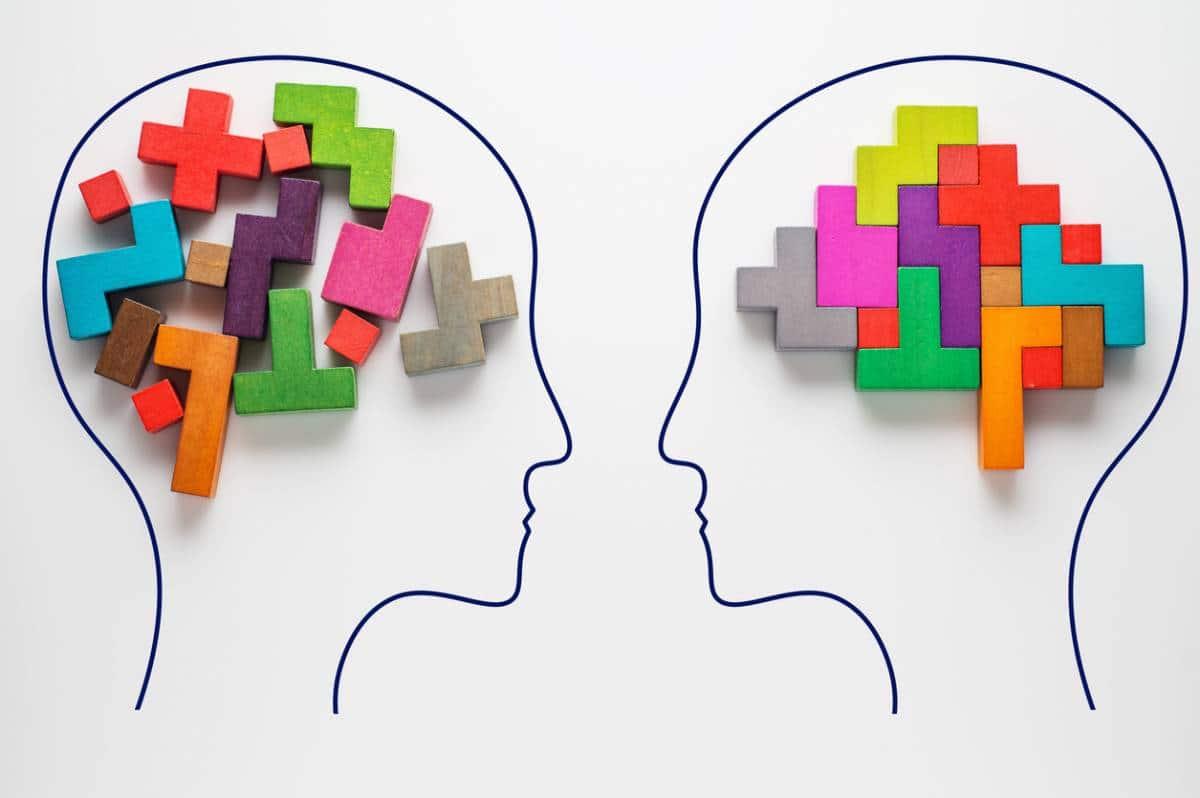 Qu'est-ce que l'intelligence sociale ?